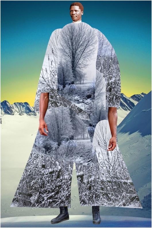 johanna-goodman-collages-3